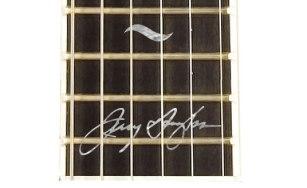 Beard Guitars, Jerry douglas signature